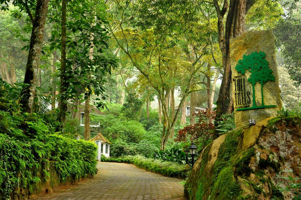 Tall Trees Resort Munnar