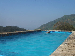 Wild Elephant Resort Munnar Rooms Rates Photos Reviews